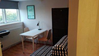 kamer voor 1 dame in Haarlem-Noord ca 15m2 per 1 januari beschikbaar